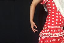 Flamenco grundkurs
