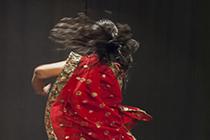 Indisk dans fortsättning